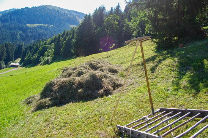 Heuernte - Bio-Bauernhof in Großarl