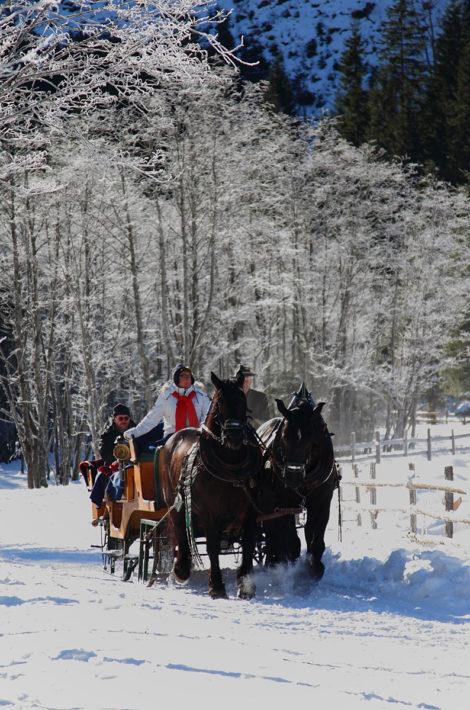 Pfandlinghof Grossarl, Schlittenfahrt Winterurlaub, Skiurlaub Salzburger Land